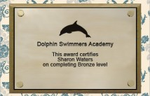 Swimmers Academy